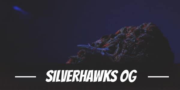 Silverhawks OG