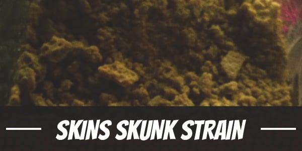 Skins Skunk Strain