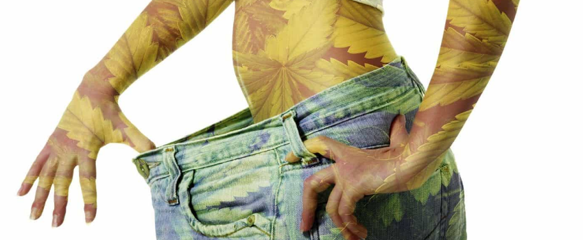 Smoking_pot_can_prevent_obesity_and_help_you_lose_weight