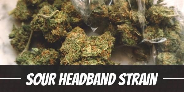 Sour Headband Strain