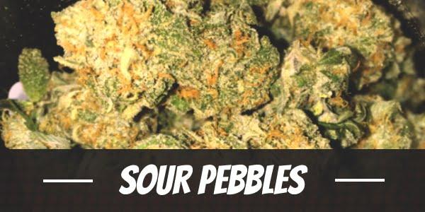 Sour Pebbles