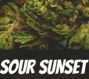 Sour Sunset Strain