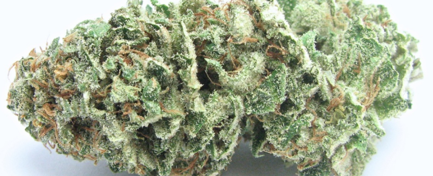 Sour_Apple_Effects