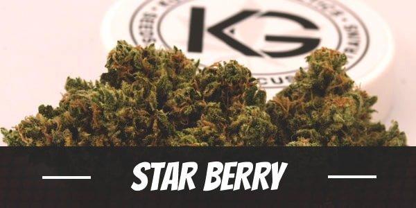 Star Berry