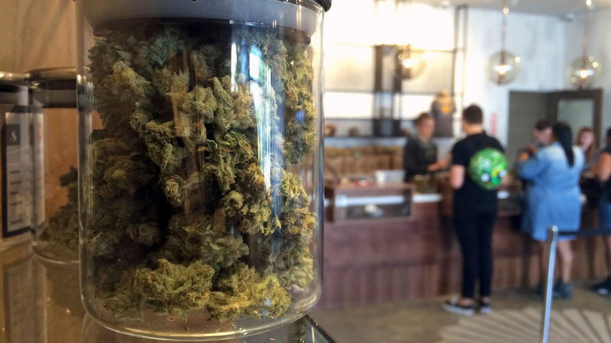 Starting a grow shop in California