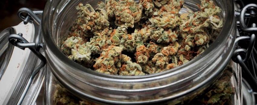 Storing Marijuana Long Term