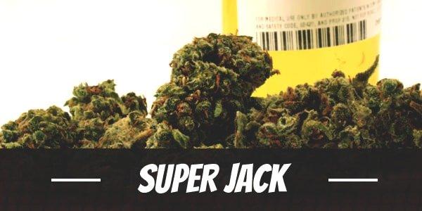 Super Jack