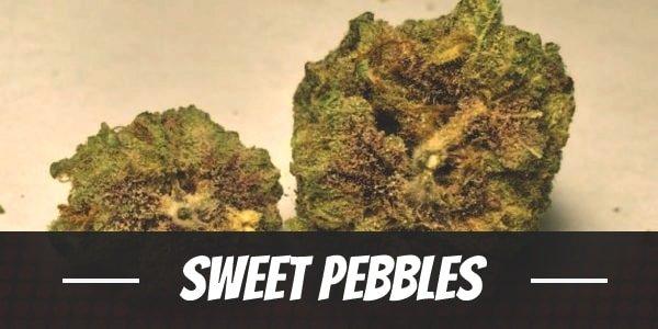 Sweet Pebbles