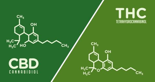 THC in cannabis