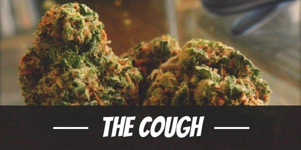 The Cough Strain