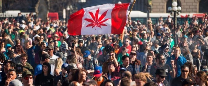 The Fight for Legalization Today