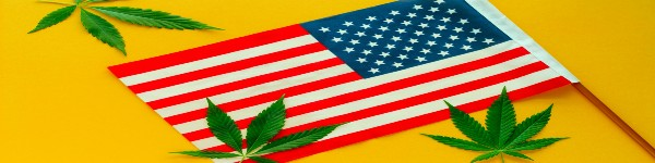 The History of Cannabis Laws