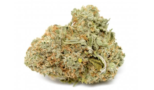 The Ox Strain Medical