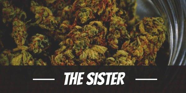 The Sister Strain