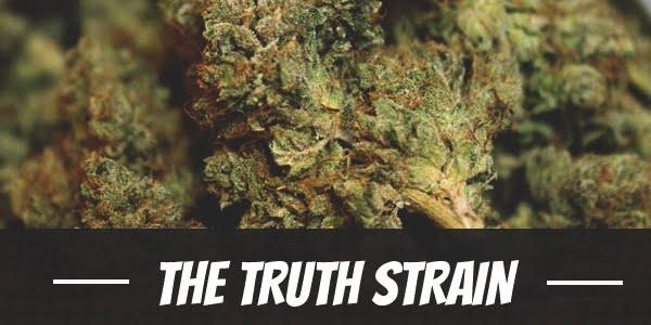The Truth Strain