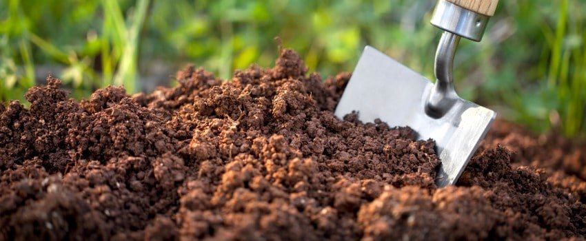 The composition of soil
