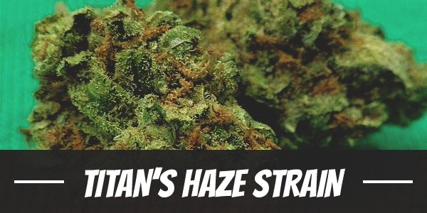 Titan's Haze Strain