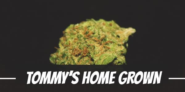 Tommy's Home Grown