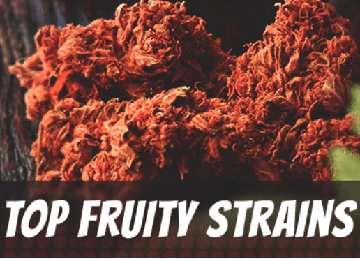 Top-Fruity-Strains