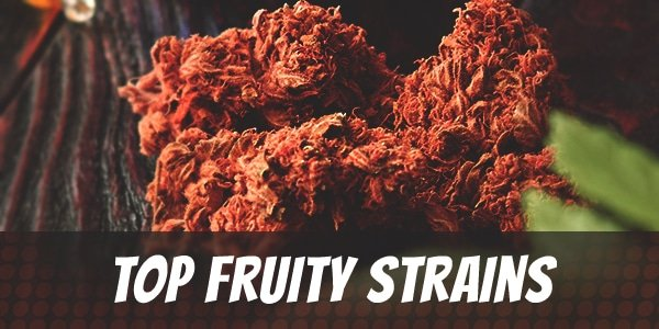 Top Fruity Strains