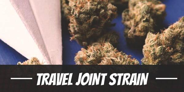 Travel Joint Strain