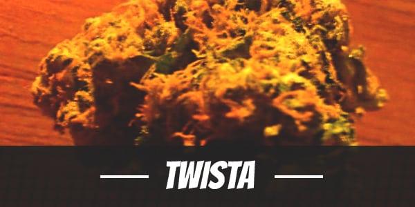Twista Strain