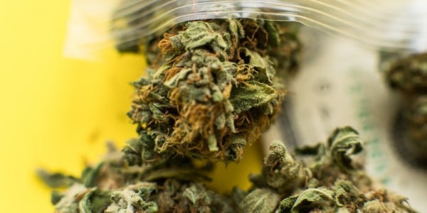 Marijuana decarboxylation _use the lowest temp to preserve more cannabinoids