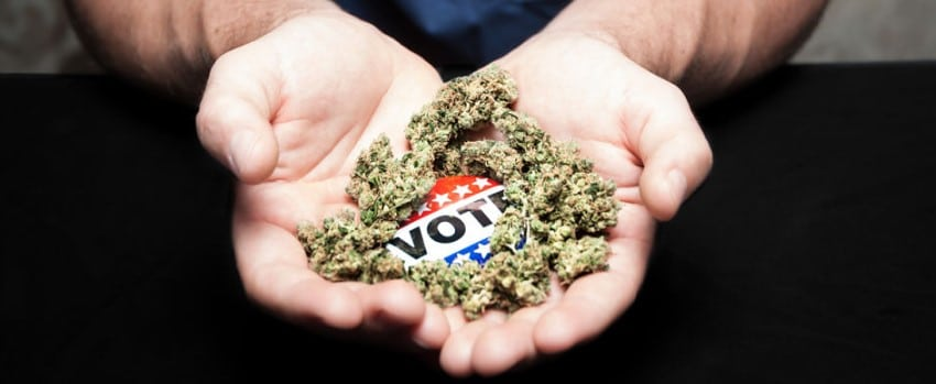 Vote on Recreational Cannabis