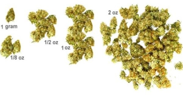 Marijuana Measurements - Gram, Eight, Quarter, Ounce And Pound Of Weed