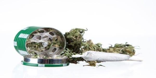 Weed in grinder