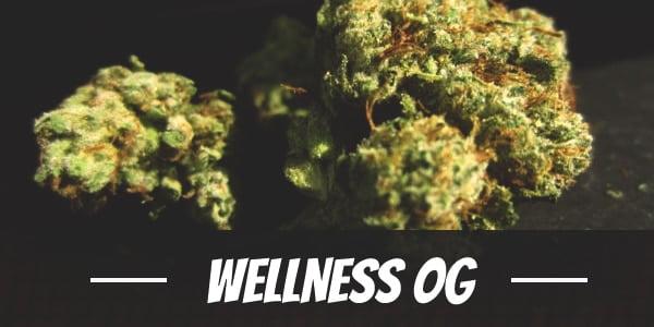 Wellness OG