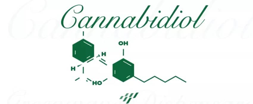 What You Need to Know About Cannabigerol (CBG)