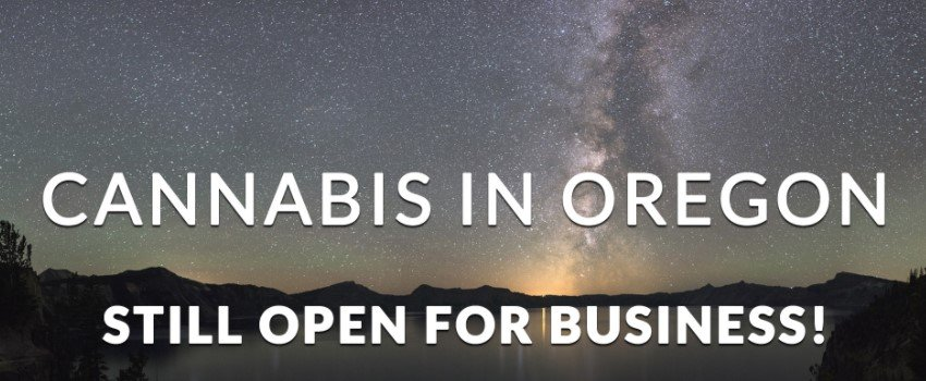 What kind of cannabis business can I open in Oregon