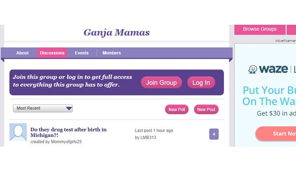 What to Expect: Ganja Mamas