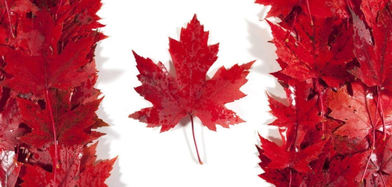Where to buy marijuana in Canada