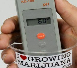 Adjust ph marijuana nutrients