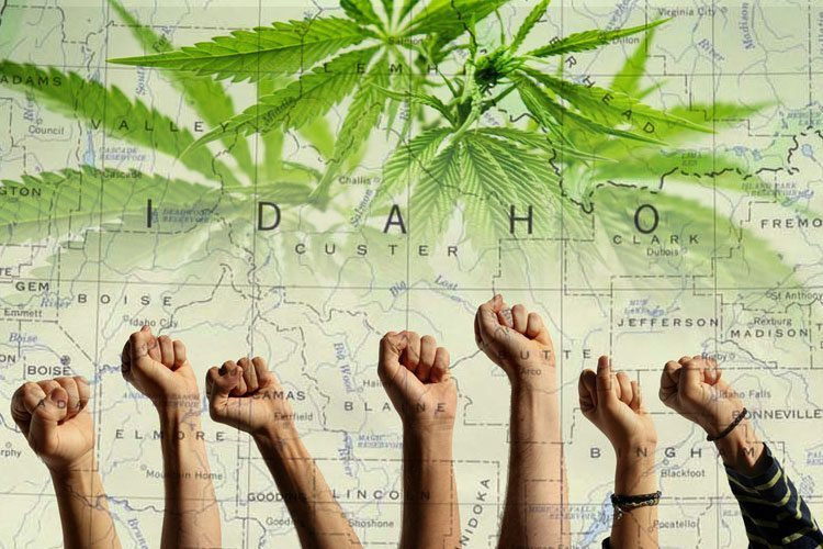 boise-hempfest-celebrates-weed-despite-idahos-insane-pot-laws-2