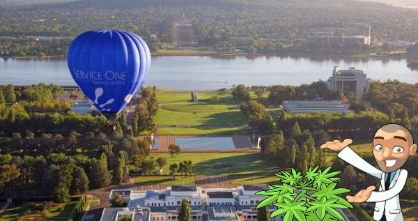 buy cannabis seeds Australian Capital Territory
