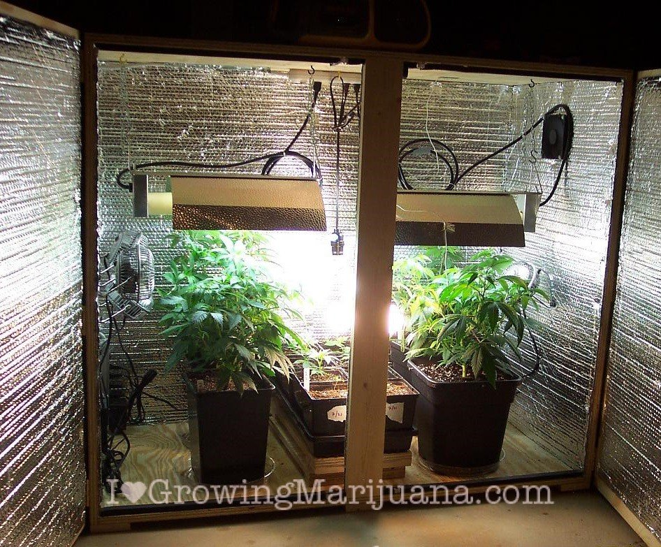 cheap-indoor-grow-room