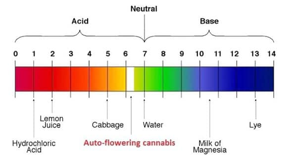 Ensuring the correct pH levels
