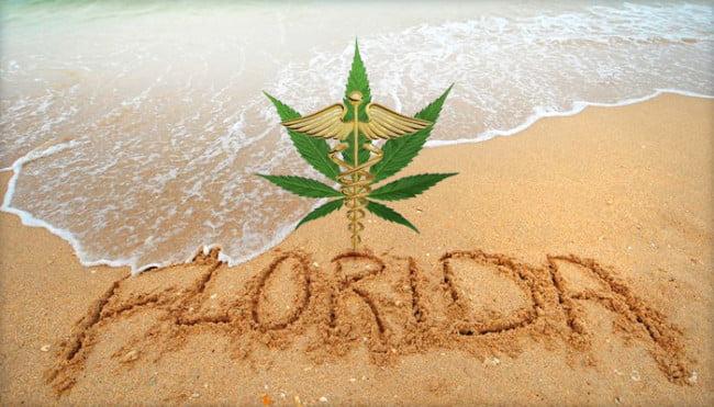 florida-marijuana-petition
