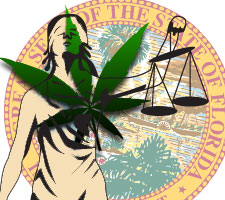 Florida votes cannabis laws november 2016