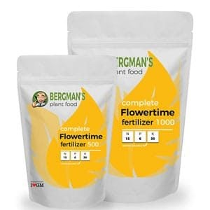 Bloom Nutrients