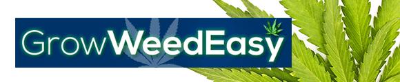 Grow_Weed_Easy