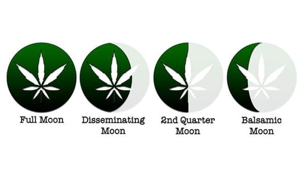 harvest weed moon