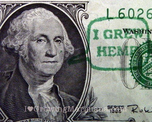 Picture of a dollar bill focused on the photo of George Washington