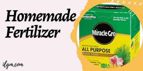 Marijuana Homemade Fertilizer