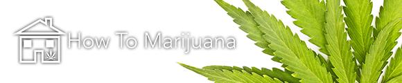 how to marijuana