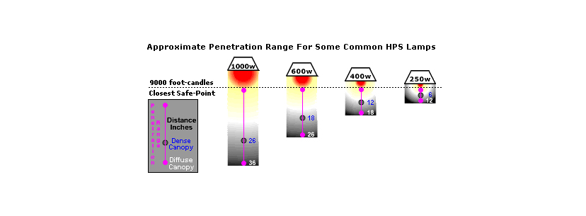 hps lamps distance yield