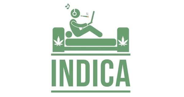 indica marijuana type effect